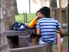 Indian College Students Fucking in public park Voyeur Recorded by people